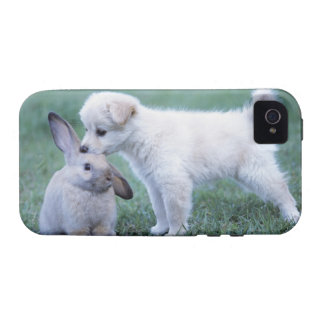 Puppy and Lop Ear Rabbit on lawn iPhone 4 Covers