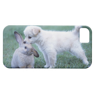Puppy and Lop Ear Rabbit on lawn iPhone SE/5/5s Case