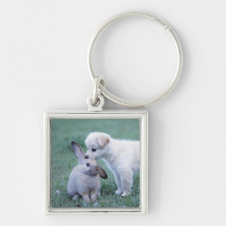 Puppy and Lop Ear Rabbit on lawn Keychain