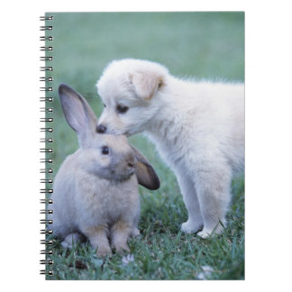 Puppy and Lop Ear Rabbit on lawn Spiral Note Books
