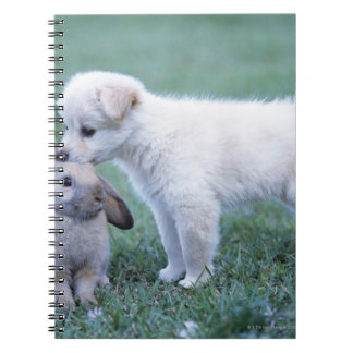 Puppy and Lop Ear Rabbit on lawn Note Books