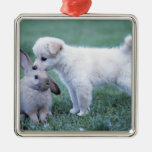 Puppy and Lop Ear Rabbit on lawn Christmas Ornaments