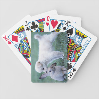 Puppy and Lop Ear Rabbit on lawn Bicycle Poker Cards