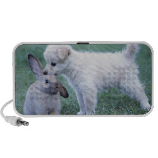 Puppy and Lop Ear Rabbit on lawn Speaker