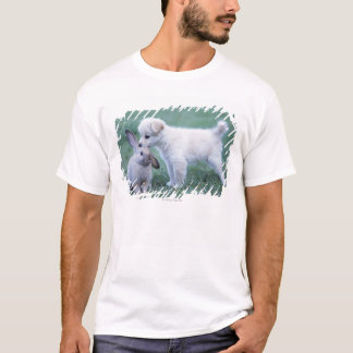 Puppy and Lop Ear Rabbit on lawn T-Shirt