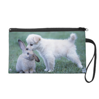 Puppy and Lop Ear Rabbit on lawn Wristlet