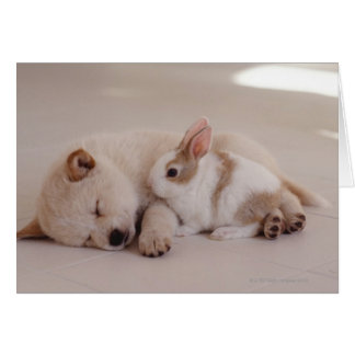 Puppy and Rabbit Card