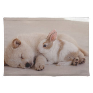 Puppy and Rabbit Placemat