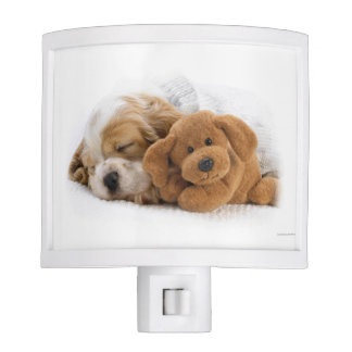 Puppy and teddy night light