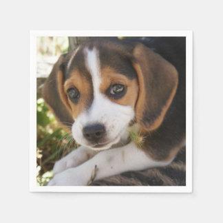 Puppy Beagles Napkin