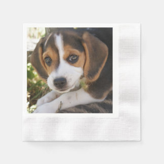 Puppy Beagles Coined Cocktail Napkin