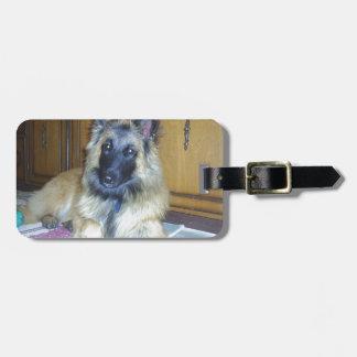 puppy Belgian_Tervueren.png Bag Tag