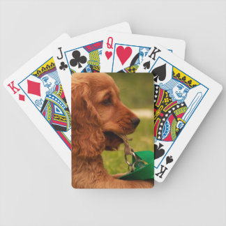 Puppy Bicycle Playing Cards