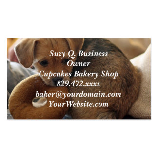 puppy biting her toy Double-Sided standard business cards (Pack of 100)