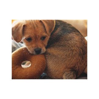 puppy biting her toy canvas print