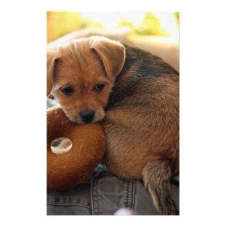 """puppy biting her toy 5.5"""" x 8.5"""" flyer"""