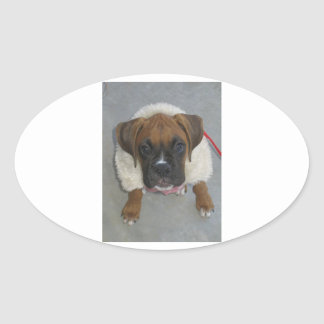 puppy Boxer_in_winter_coat.png Oval Sticker
