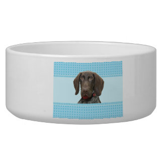 Puppy Boy Glossy Grizzly Dog Bowl
