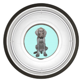 Puppy Boy Glossy Grizzly Dog Bowl Pet Bowl