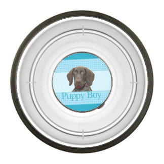 Puppy Boy Glossy Grizzly Dog Bowl Pet Bowl