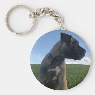 Puppy Bullmastiff Keychain