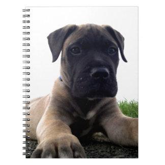 Puppy Bullmastiff Spiral Notebook