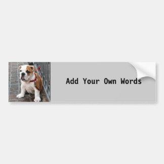 Puppy Car Bumper Sticker