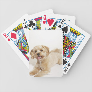 Puppy (Canis familiaris) 2 Bicycle Playing Cards