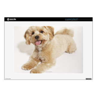 """Puppy (Canis familiaris) 2 Skins For 15"""" Laptops"""