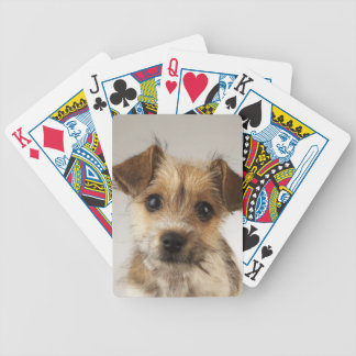 Puppy (Canis familiaris) Bicycle Playing Cards