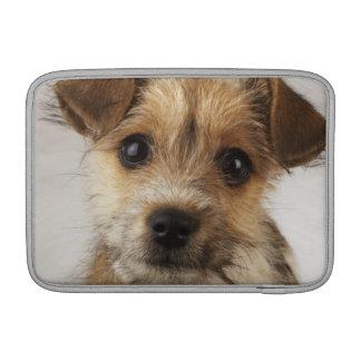 Puppy (Canis familiaris) MacBook Air Sleeves