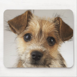 Puppy (Canis familiaris) Mousepads