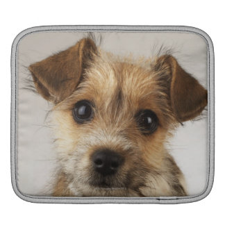 Puppy (Canis familiaris) Sleeve For iPads