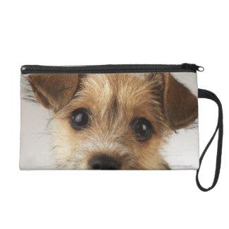 Puppy (Canis familiaris) Wristlet Purse