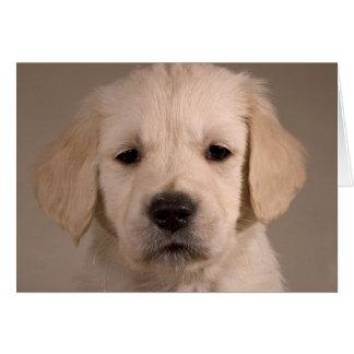 Puppy. Card by cARTerART