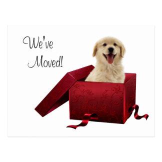Puppy Change of Address Postcards