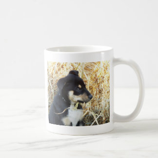 puppy chomping hay coffee mug