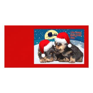 Puppy Christmas:I saw Mummy Kissing Santa Claus Photo Card