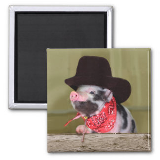 Puppy Cowboy Baby Piglet Farm Animals Babies 2 Inch Square Magnet