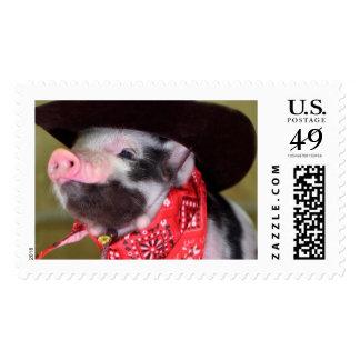 Puppy Cowboy Baby Piglet Farm Animals Babies Postage Stamp