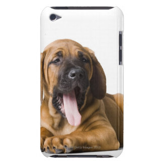 Puppy Dog 2 Barely There iPod Cover