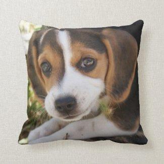 Puppy Dog Beagle Pillows