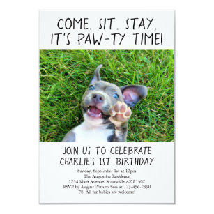 Dog Birthday Invitations Announcements Zazzle