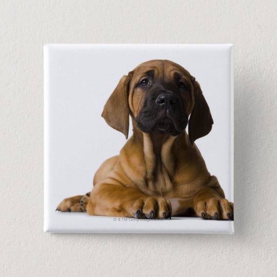 Puppy Dog Button