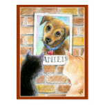 """Puppy dog, cats, """"Wanted"""" poster post card"""