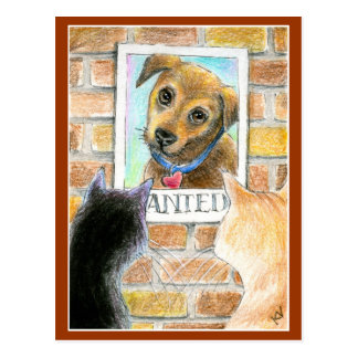 "Puppy dog, cats, ""Wanted"" poster post card"