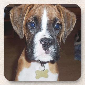 Puppy Dog Coaster