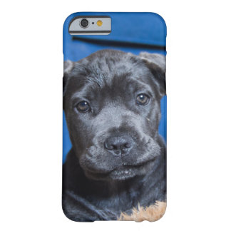 Puppy dog eyes lets play barely there iPhone 6 case