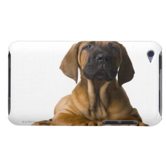 Puppy Dog iPod Touch Case