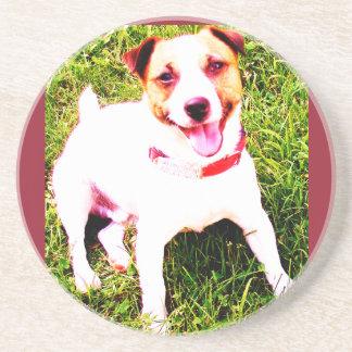 puppy dog, Jack Daniels Drink Coaster